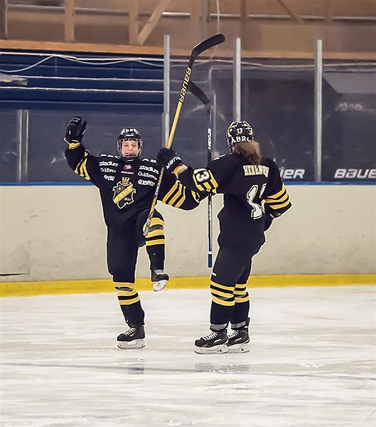 aik hockey dam